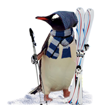 penguin-offers